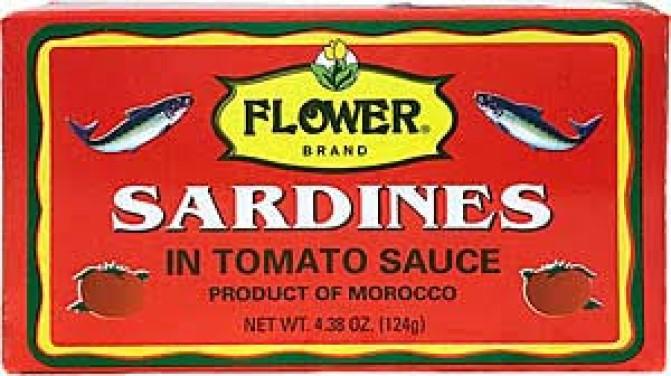 medium flower sardine in tomato sauce 4 oz ugFaXX4Q6m